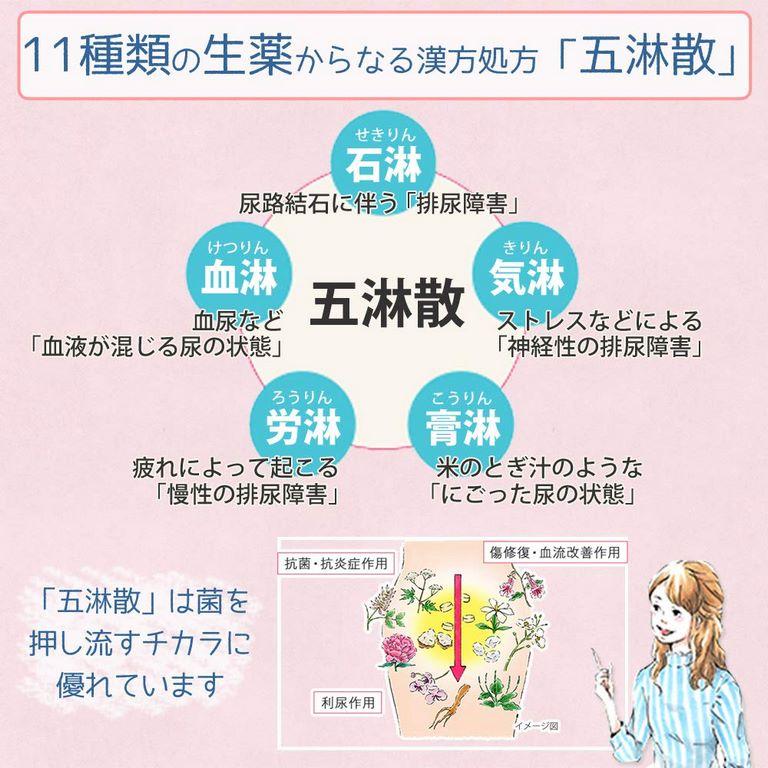 thuốc trị viêm đường tiết niệu của nhật