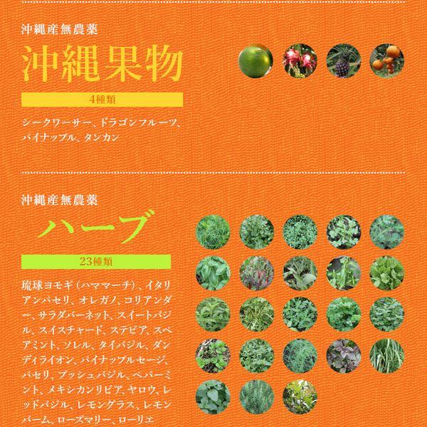 tảo xoắn nhật bản1
